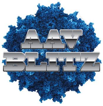 AAV-Blitz-logo-image-only