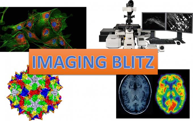 imaging-blitz